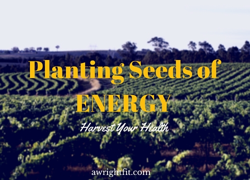 Harvesting More Energy In Your Life!